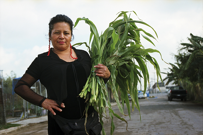 Kati Lopez with armload of fresh corn leaves.